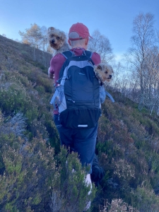 Coul House Celebrations in the Scottish Highlands, Molly and Bella the Coul House Hotel Dogs getting a lift in Stuarts Rucksack